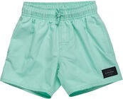 Rip Curl Wipeout Volley Shorts Badbyxa, Mint